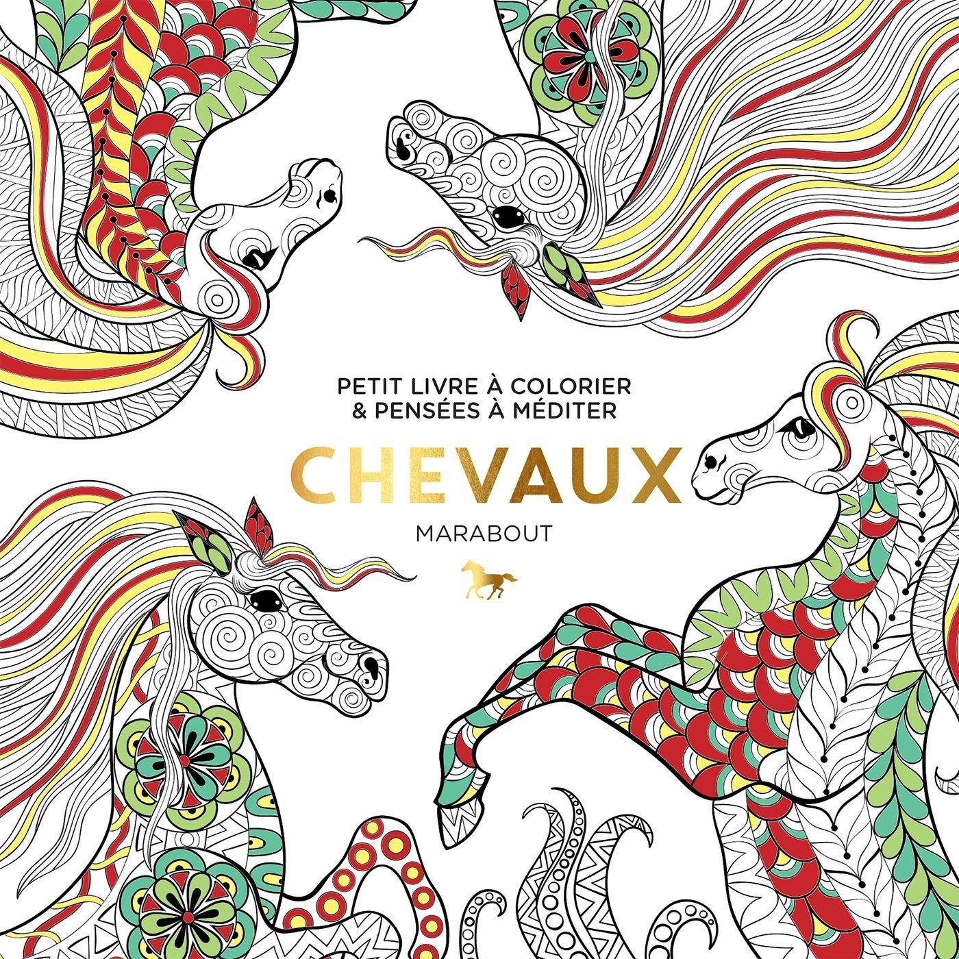 Du coloriage gogo chez marabout en janvier songe d 39 une nuit d 39 t webzine culturel 100 - Mandala de chevaux ...